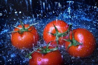 فوائد الطماطم عشرة من أهم فوائد الطماطم